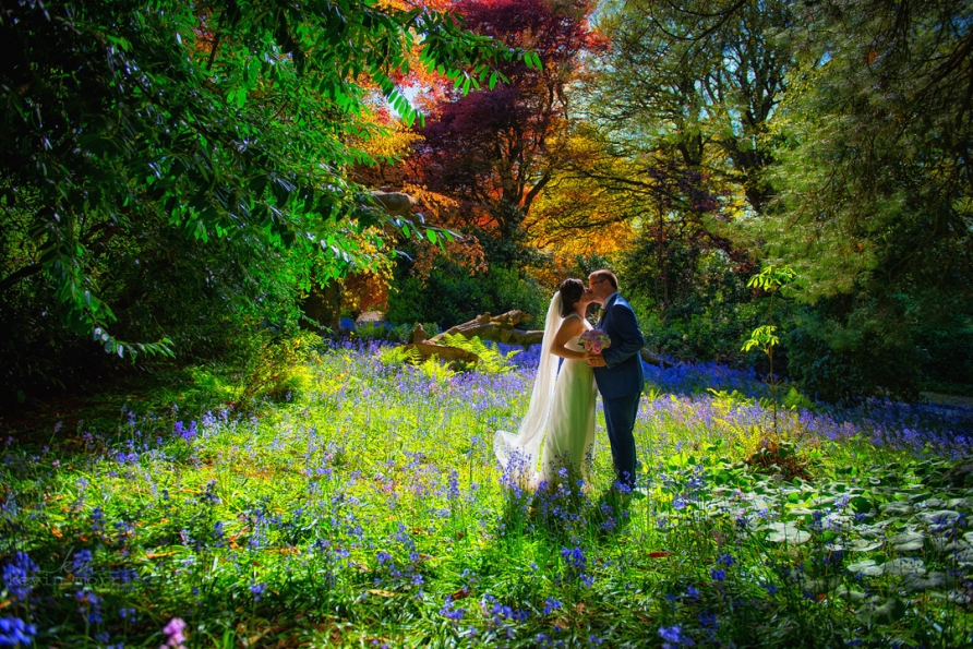 Stunning bluebells in Trudder Lodge at the fab wedding of Neasa & PJ